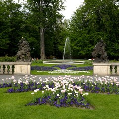 Visitors can find beautiful flower beds in this part of the garden.