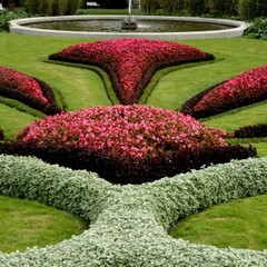 Nice flower beds can be seen in the garden from April to October.